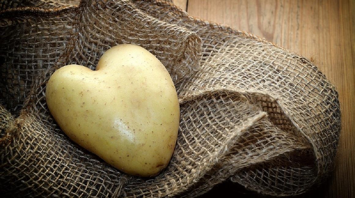 mit reis und kartoffeln abnehmen